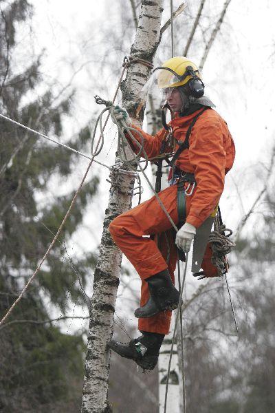 Промышленный альпинист требуется беларусь